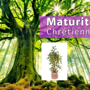 Maturité chrétienne – pensée du jour 03 ocobre