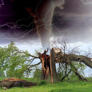 Notre vie au sein de la tempête.