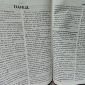 Daniel, homme de bon sens et de cohérence.