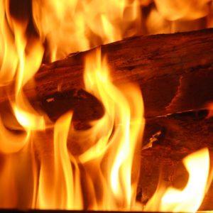 Un tison arraché du feu.
