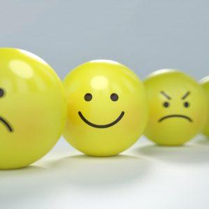 Le bonheur après le drame.